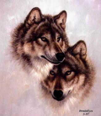 wolf014.jpg